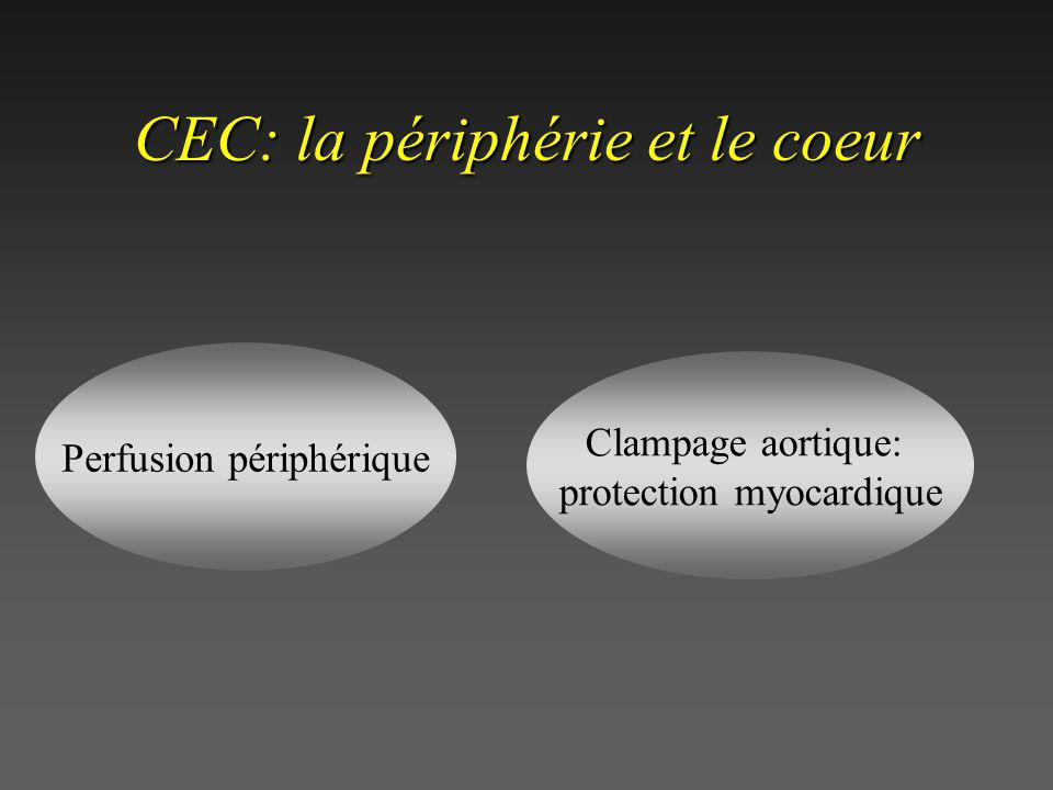 A T G G C T T A C C G A A T T G C T T A A C G A « sauvage » substitution A T G C T T A C G A délétion A T A G G C T T A T C C G A insertion