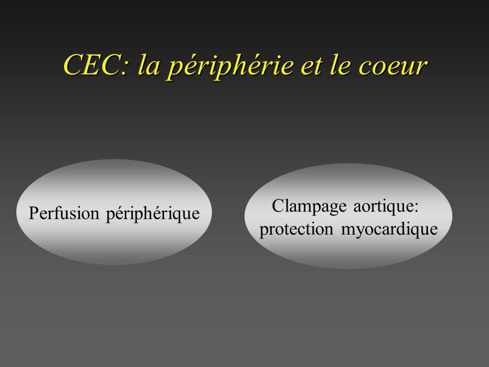 CEC: canules en place