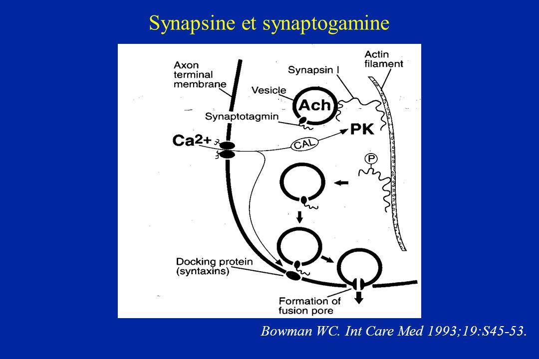 Synapsine et synaptogamine Bowman WC. Int Care Med 1993;19:S45-53.
