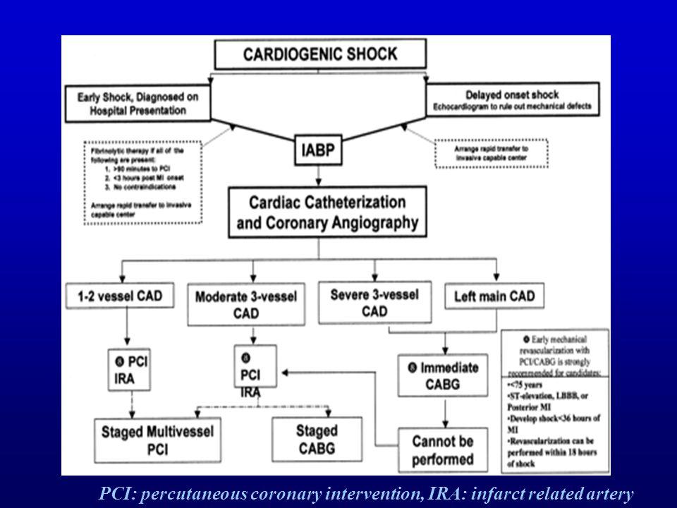 PCI: percutaneous coronary intervention, IRA: infarct related artery