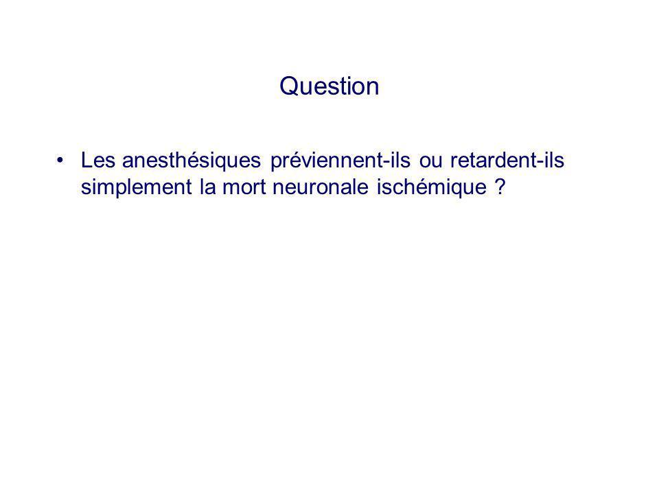 Question Les anesthésiques préviennent-ils ou retardent-ils simplement la mort neuronale ischémique ?