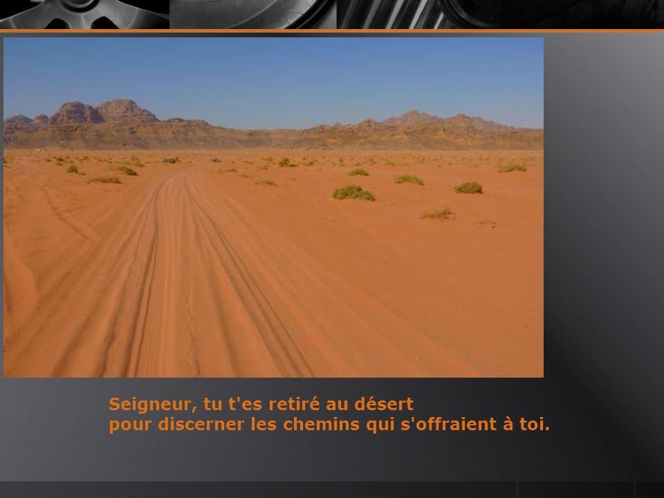 Seigneur, tu t es retiré au désert pour discerner les chemins qui s offraient à toi.