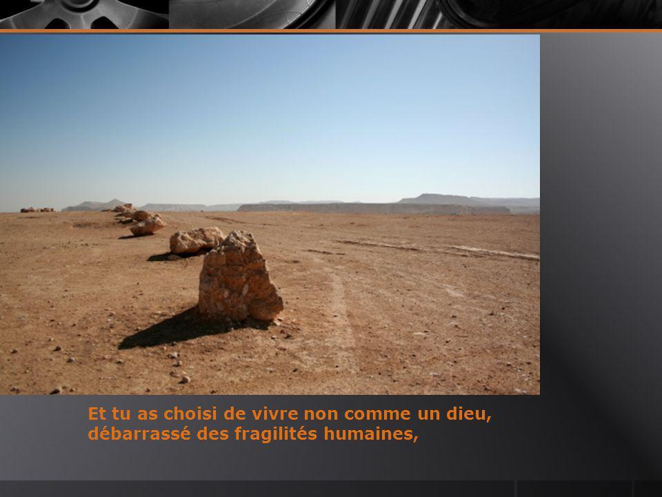 Seigneur, tu t'es retiré au désert pour discerner les chemins qui s'offraient à toi.