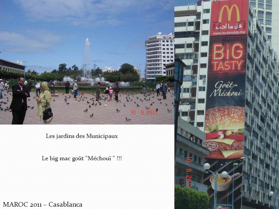 MAROC 2011 – Casablanca Les jardins des Municipaux Le big mac goût