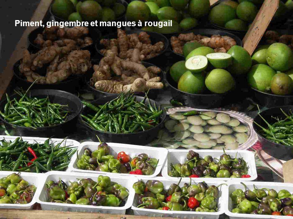Vente de manioc