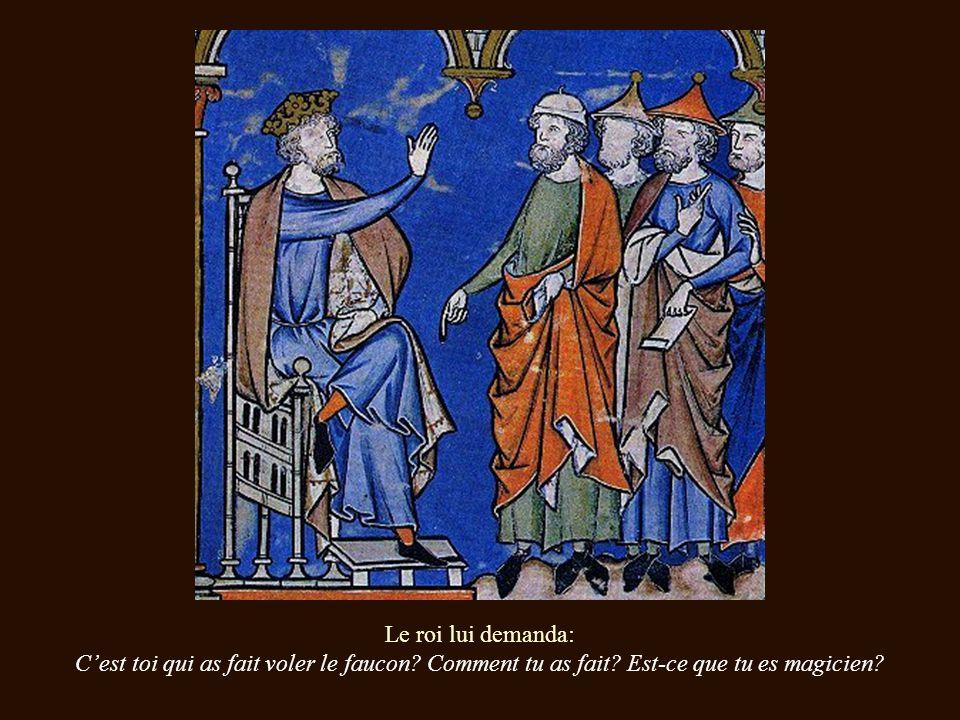 Le roi lui demanda: Cest toi qui as fait voler le faucon.