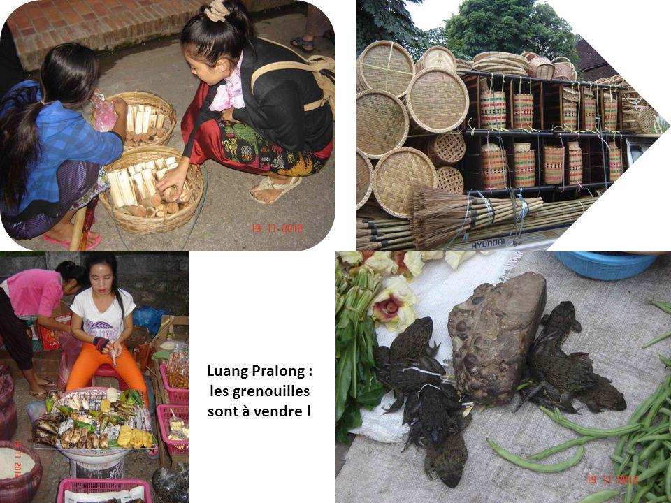 Voyage Laos-Cambodge Nov. 2012 – P. Lacroix Luang Pralong : les grenouilles sont à vendre !