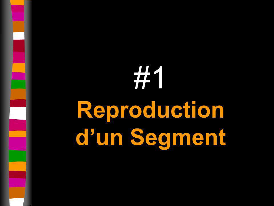 #1 Reproduction dun Segment