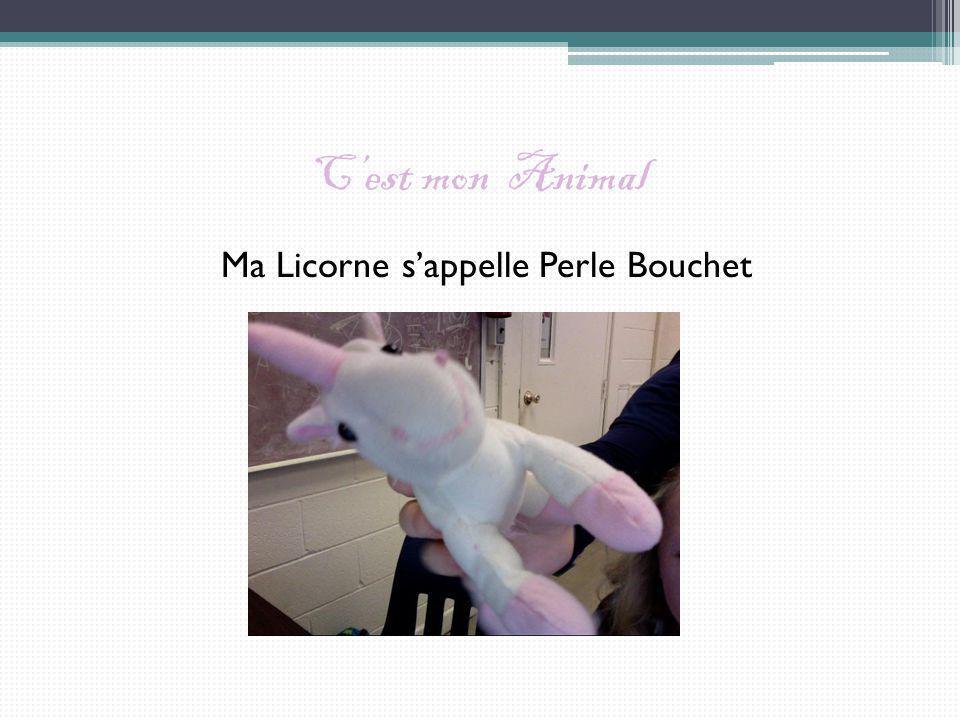 Cest mon Animal Ma Licorne sappelle Perle Bouchet