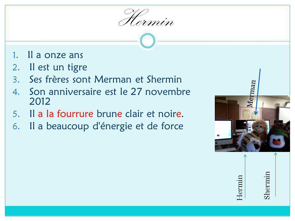 Hermin 1. Il a onze ans 2. Il est un tigre 3. Ses frères sont Merman et Shermin 4.
