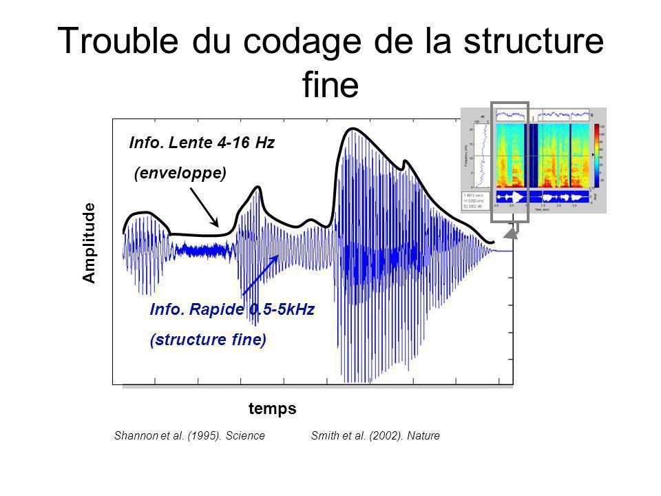 Trouble du codage de la structure fine Info.Lente 4-16 Hz (enveloppe) Info.