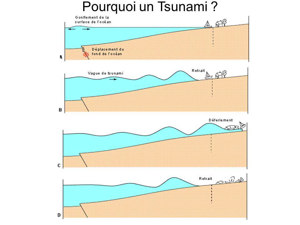 Pourquoi un Tsunami ?