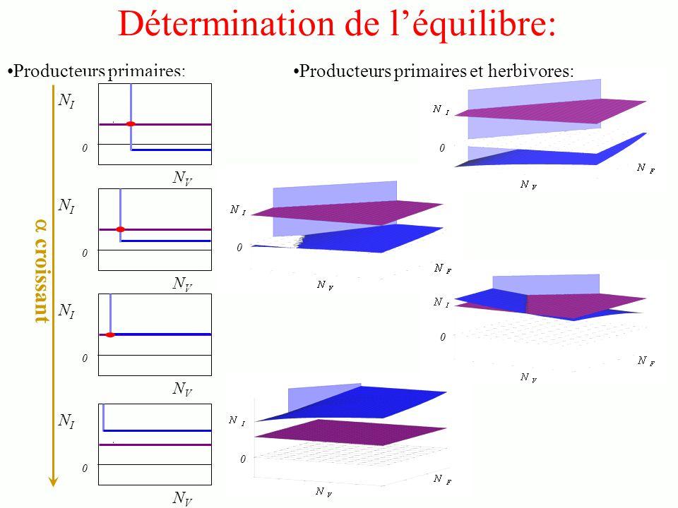 Détermination de léquilibre: Producteurs primaires: NINI NVNV NINI 0 NVNV NINI 0 NVNV NINI 0 NVNV 0 croissant Producteurs primaires et herbivores: 0 0 0 0