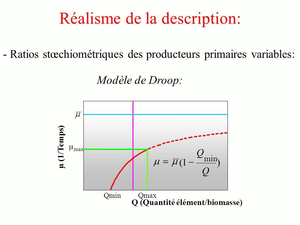 Réalisme de la description: - Ratios stœchiométriques des producteurs primaires variables: Q (Quantité élément/biomasse) µ (1/Temps) Qmin Qmax µ max )1( min Q Q Modèle de Droop: