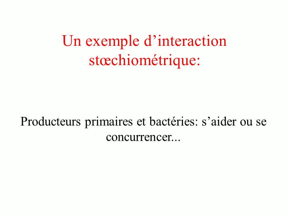 Un exemple dinteraction stœchiométrique: Producteurs primaires et bactéries: saider ou se concurrencer...
