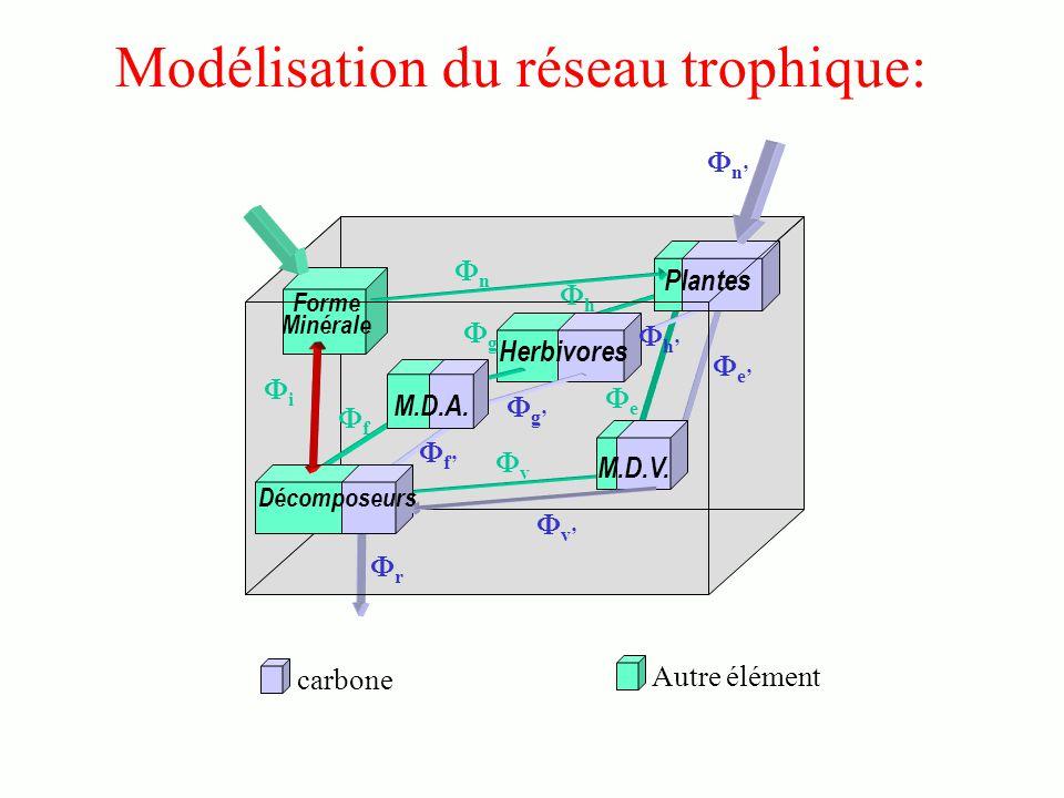 carbone Autre élément Forme Minérale Plantes Herbivores M.D.V.