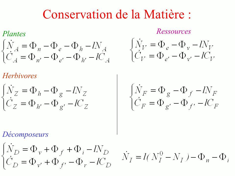 Conservation de la Matière : Plantes Décomposeurs Herbivores Ressources