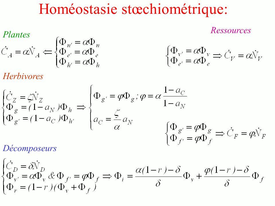 Homéostasie stœchiométrique: Plantes Décomposeurs Herbivores Ressources