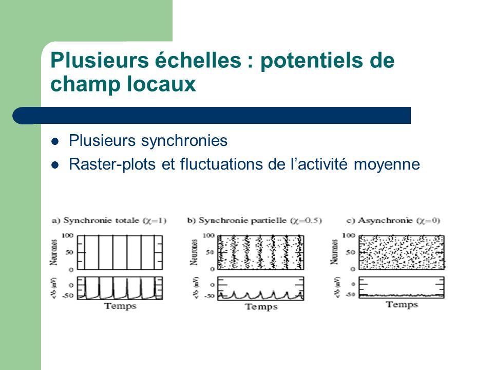 Plusieurs échelles : potentiels de champ locaux Plusieurs synchronies Raster-plots et fluctuations de lactivité moyenne