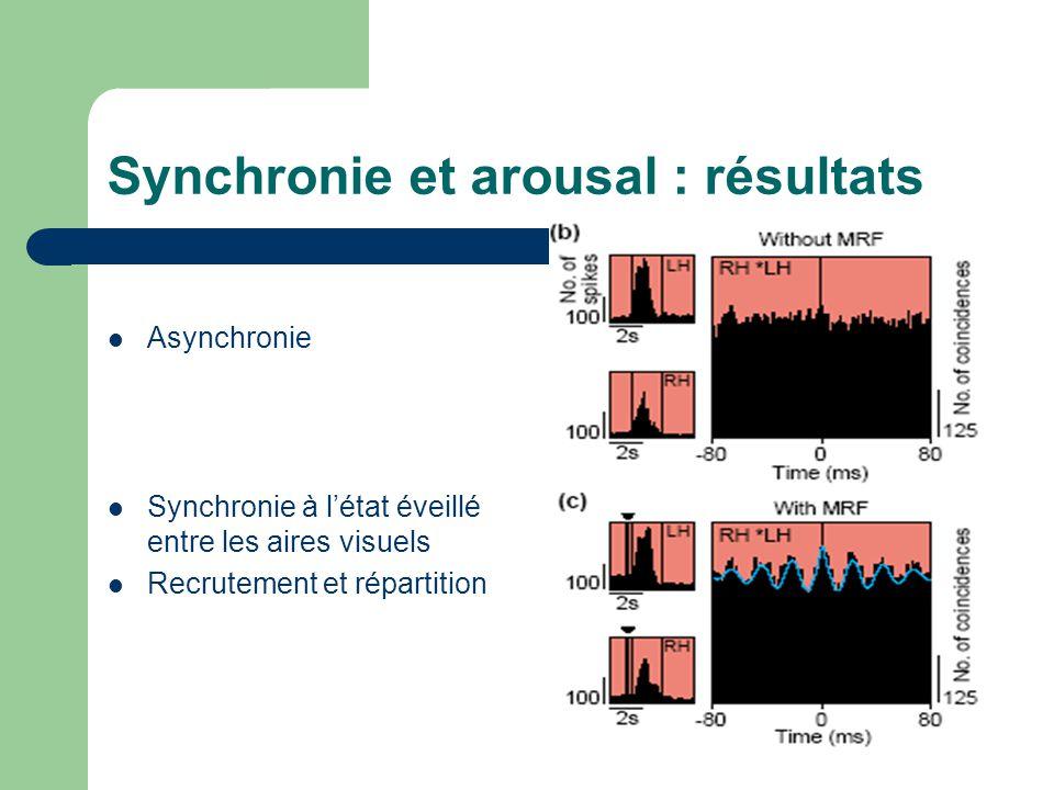 Synchronie et arousal : résultats Asynchronie Synchronie à létat éveillé entre les aires visuels Recrutement et répartition