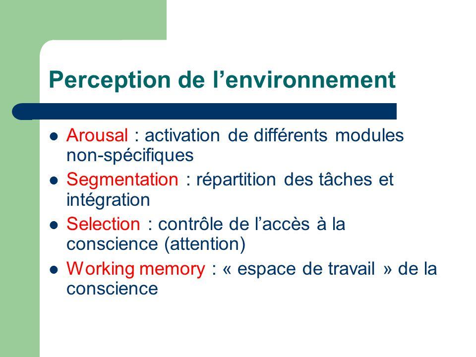 Perception de lenvironnement Arousal : activation de différents modules non-spécifiques Segmentation : répartition des tâches et intégration Selection : contrôle de laccès à la conscience (attention) Working memory : « espace de travail » de la conscience