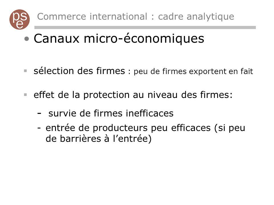 Commerce international : cadre analytique Canaux micro-économiques sélection des firmes : peu de firmes exportent en fait effet de la protection au niveau des firmes: - survie de firmes inefficaces -entrée de producteurs peu efficaces (si peu de barrières à lentrée)
