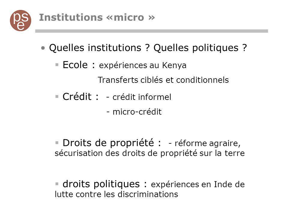 Institutions «micro » Quelles institutions ? Quelles politiques ? Ecole : expériences au Kenya Transferts ciblés et conditionnels Crédit : - crédit in