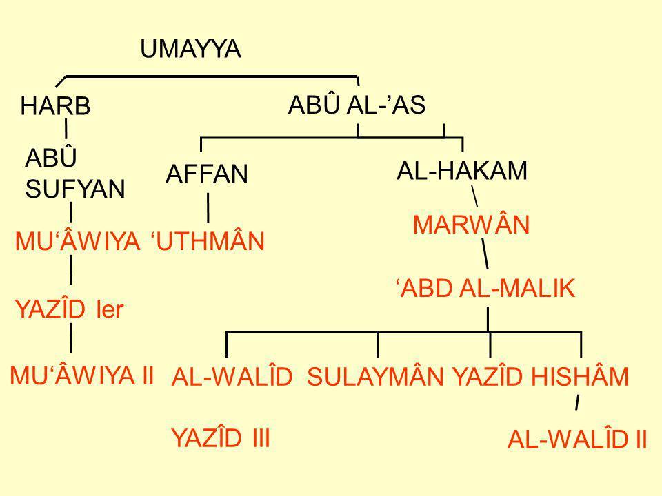 ABÛ AL-AS AFFAN AL-HAKAM ABD AL-MALIK YAZÎDSULAYMÂN AL-WALÎD II UTHMÂN AL-WALÎDHISHÂM ABÛ SUFYAN MUÂWIYA YAZÎD Ier MUÂWIYA II HARB UMAYYA MARWÂN YAZÎD