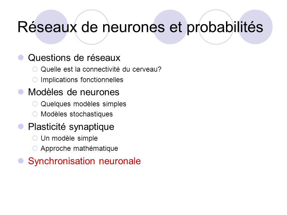 Réseaux de neurones et probabilités Questions de réseaux Quelle est la connectivité du cerveau? Implications fonctionnelles Modèles de neurones Quelqu
