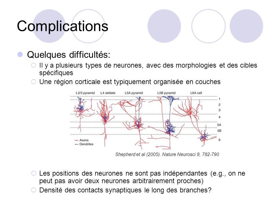 Complications Quelques difficultés: Il y a plusieurs types de neurones, avec des morphologies et des cibles spécifiques Une région corticale est typiq