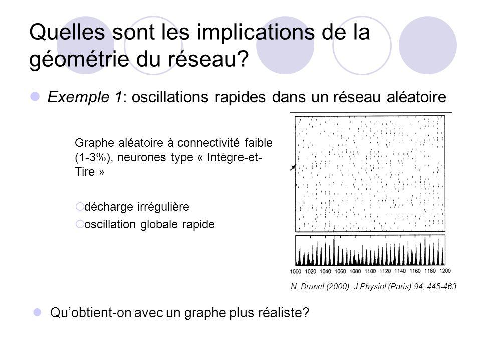 Quelles sont les implications de la géométrie du réseau? Exemple 1: oscillations rapides dans un réseau aléatoire N. Brunel (2000). J Physiol (Paris)
