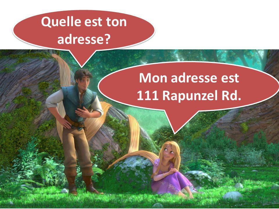 Quelle est ton adresse? Mon adresse est 111 Rapunzel Rd. Mon adresse est 111 Rapunzel Rd.