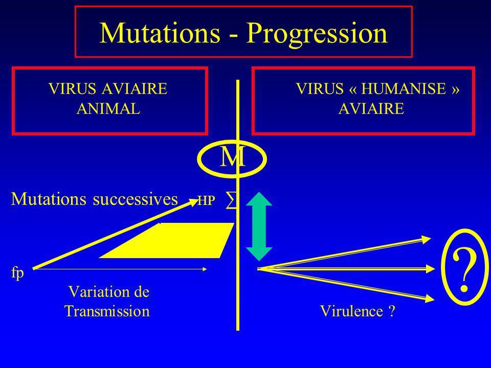 Mutations - Progression VIRUS AVIAIRE VIRUS « HUMANISE » ANIMAL AVIAIRE M Mutations successives HP fp Variation de Transmission Virulence ? ?