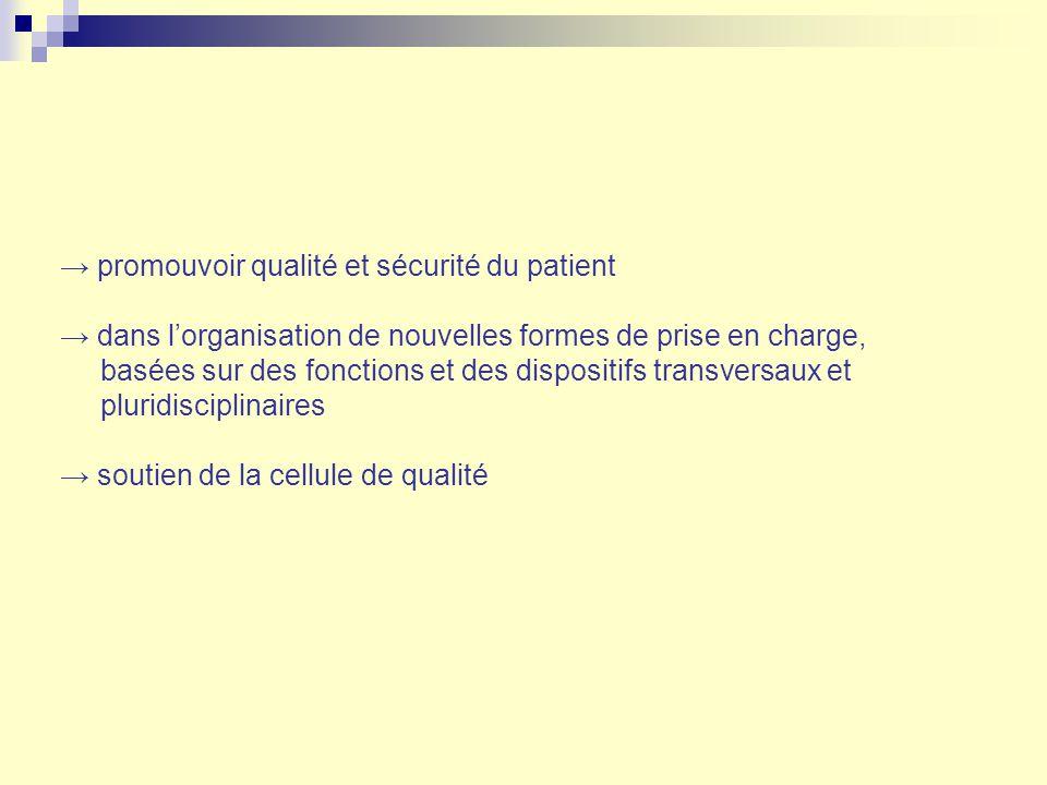 promouvoir qualité et sécurité du patient dans lorganisation de nouvelles formes de prise en charge, basées sur des fonctions et des dispositifs trans