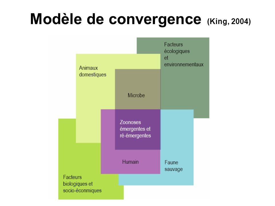 Modèle de convergence (King, 2004)