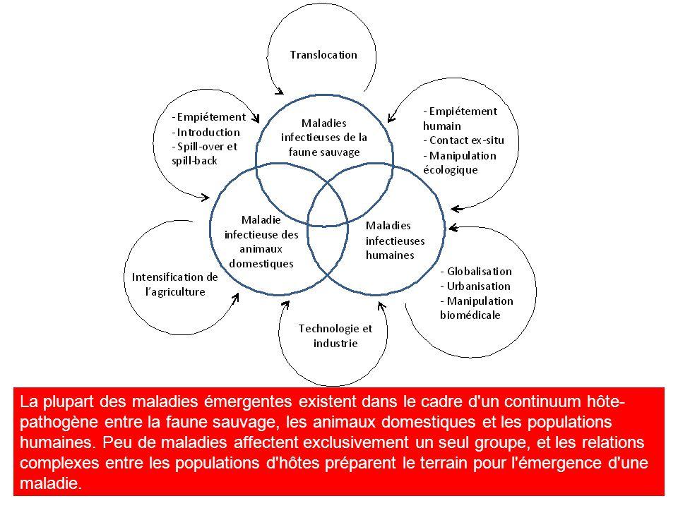 La plupart des maladies émergentes existent dans le cadre d'un continuum hôte- pathogène entre la faune sauvage, les animaux domestiques et les popula