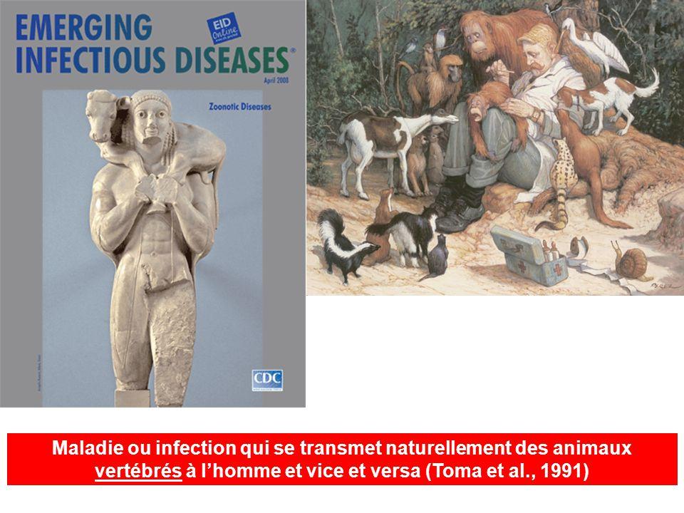 Maladie ou infection qui se transmet naturellement des animaux vertébrés à lhomme et vice et versa (Toma et al., 1991)