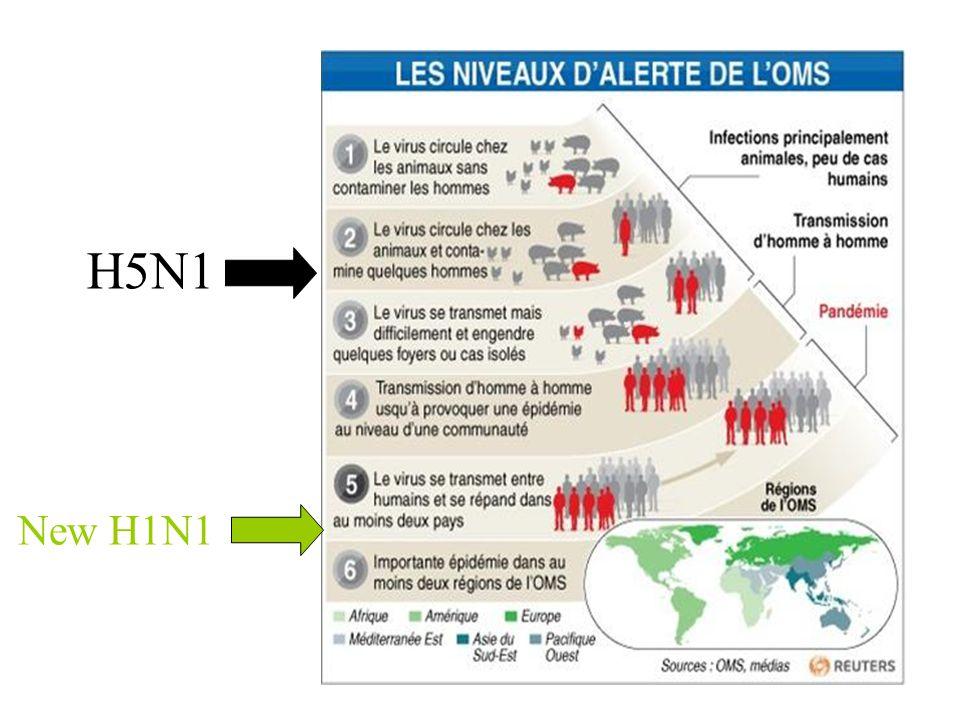 H5N1 New H1N1