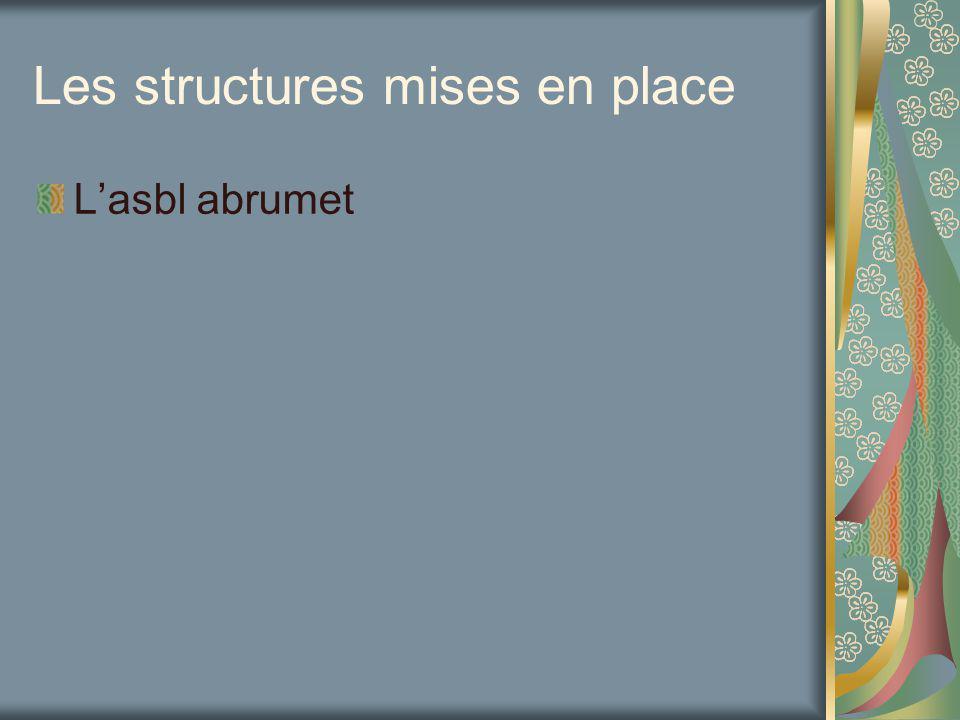 Les structures mises en place Lasbl abrumet