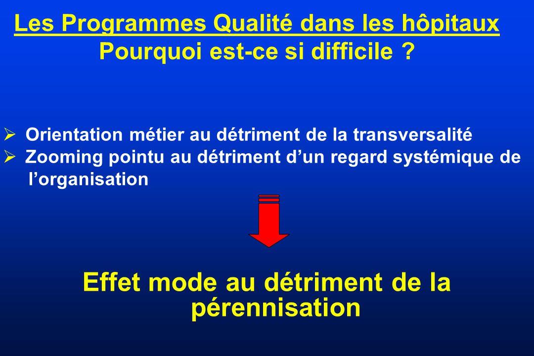 Les Programmes Qualité dans les hôpitaux Pourquoi est-ce si difficile ? Orientation métier au détriment de la transversalité Zooming pointu au détrime