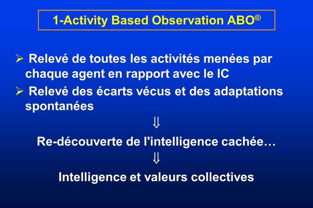 Relevé de toutes les activités menées par chaque agent en rapport avec le IC Relevé des écarts vécus et des adaptations spontanées Re-découverte de l'