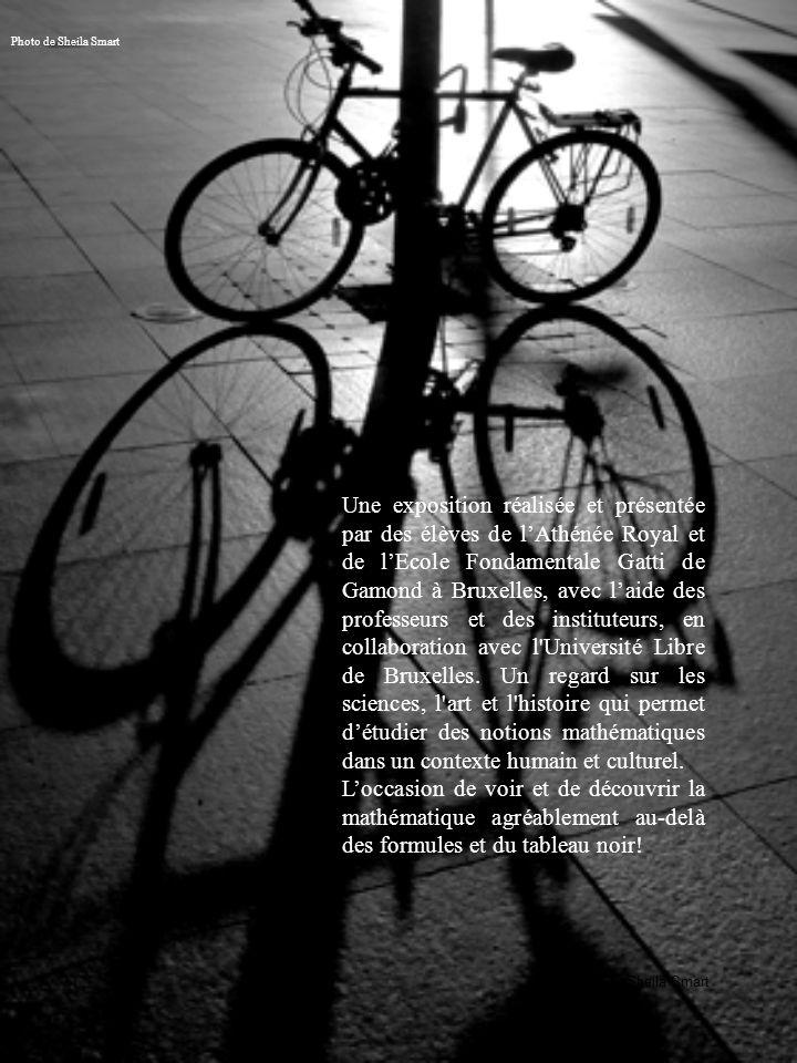 Sheila Smart Photo de Sheila Smart Une exposition réalisée et présentée par des élèves de lAthénée Royal et de lEcole Fondamentale Gatti de Gamond à Bruxelles, avec laide des professeurs et des instituteurs, en collaboration avec l Université Libre de Bruxelles.