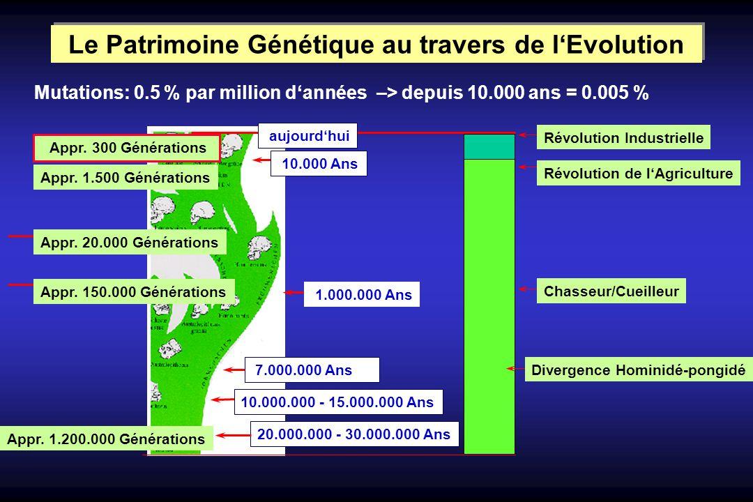 20.000.000 - 30.000.000 Ans 10.000.000 - 15.000.000 Ans 7.000.000 Ans 1.000.000 Ans Appr. 1.500 Générations Appr. 20.000 Générations Appr. 150.000 Gén