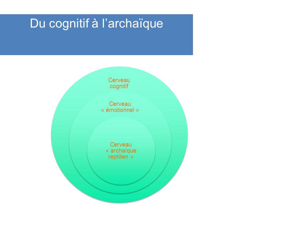 Du cognitif à larchaïque