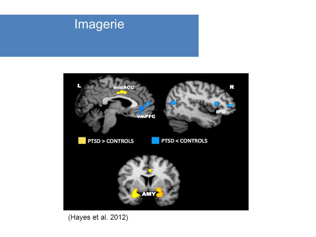 () () (Hayes et al. 2012) Imagerie