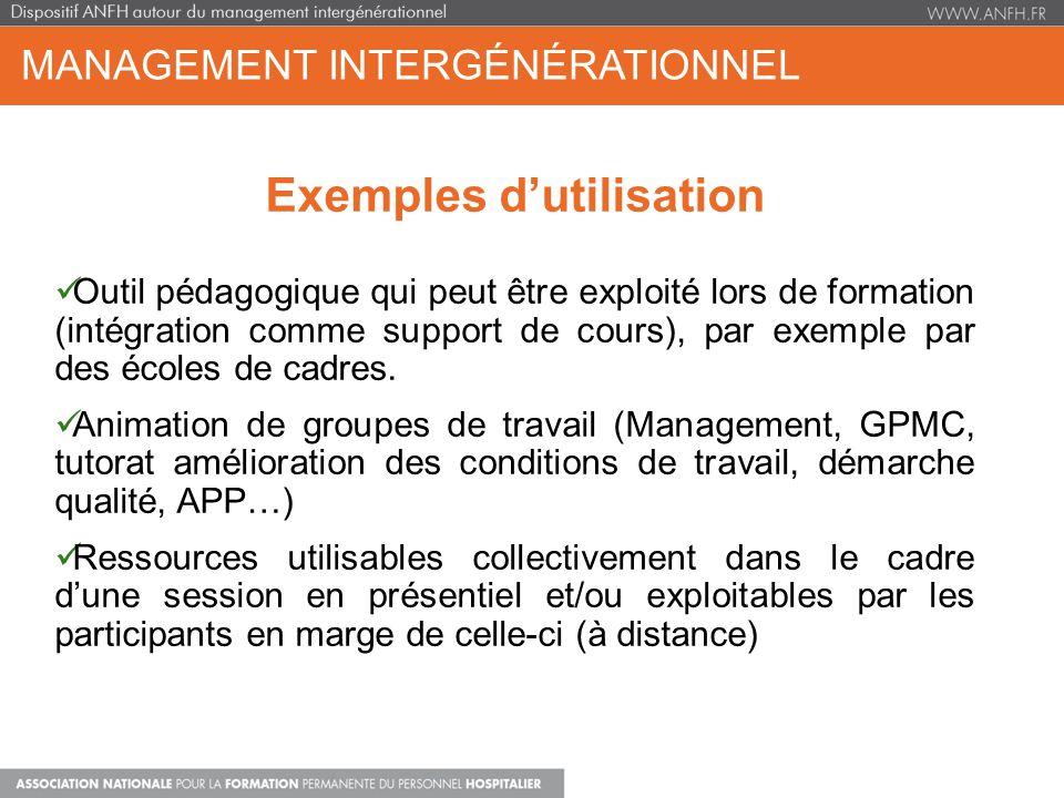 MANAGEMENT INTERGÉNÉRATIONNEL Exemples dutilisation Outil pédagogique qui peut être exploité lors de formation (intégration comme support de cours), p