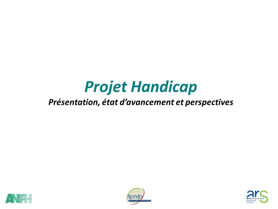 Projet Handicap Présentation, état davancement et perspectives