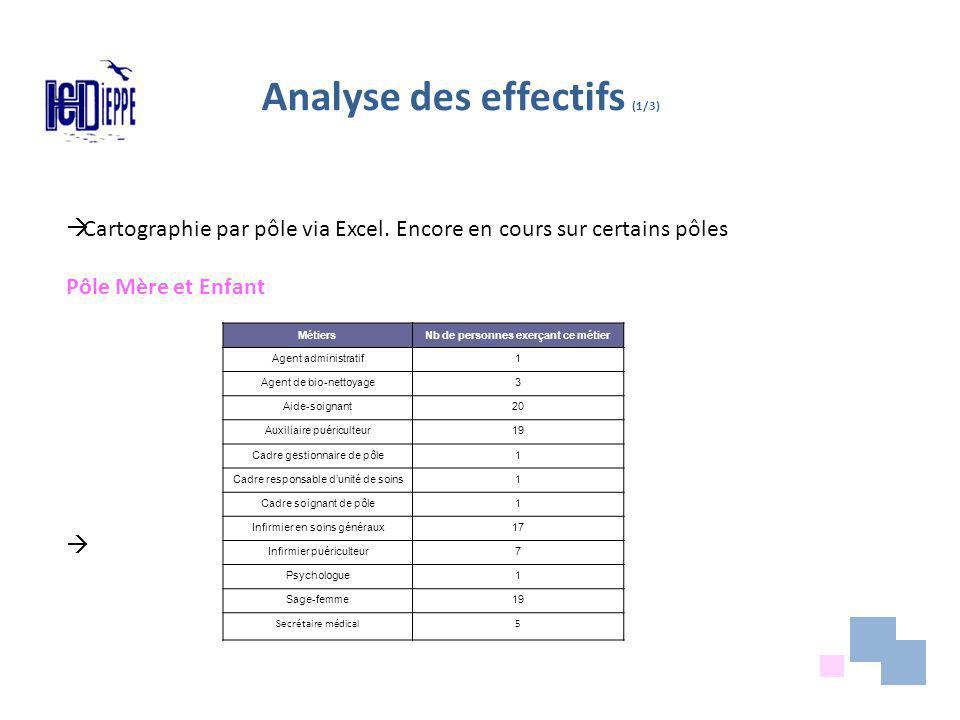 Analyse des effectifs (1/3) Cartographie par pôle via Excel.
