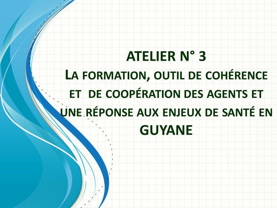 ATELIER N° 3 L A FORMATION, OUTIL DE COHÉRENCE ET DE COOPÉRATION DES AGENTS ET UNE RÉPONSE AUX ENJEUX DE SANTÉ EN GUYANE