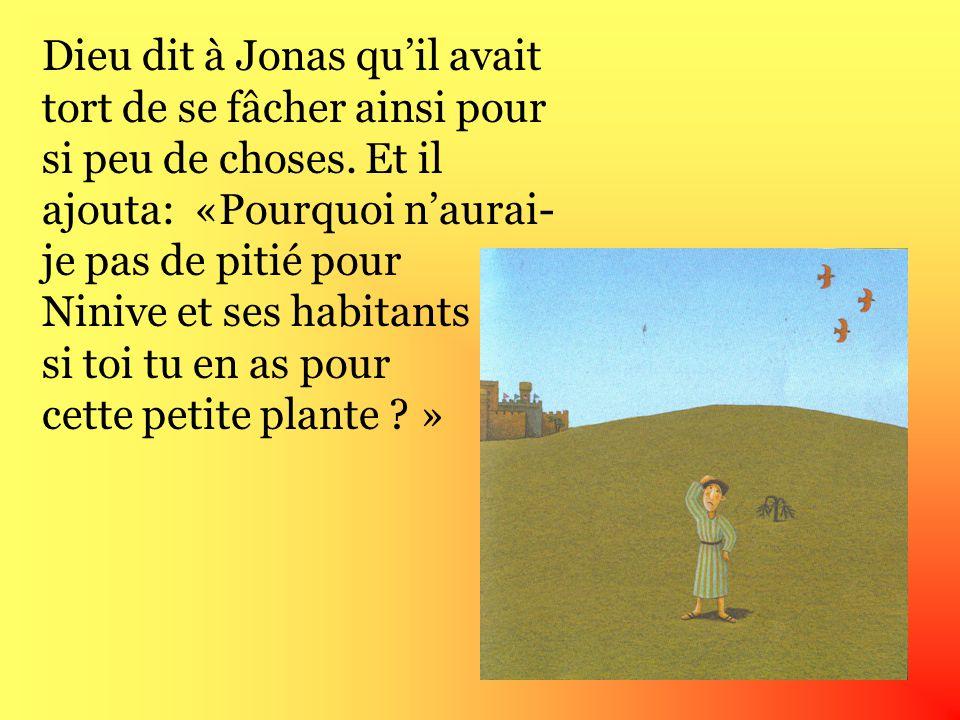 Jonas était assis à lest de la ville et sétait endormi. Pour lui faire de lombre, Dieu fit pousser une plante puis Dieu la fit mourir et Jonas se mit